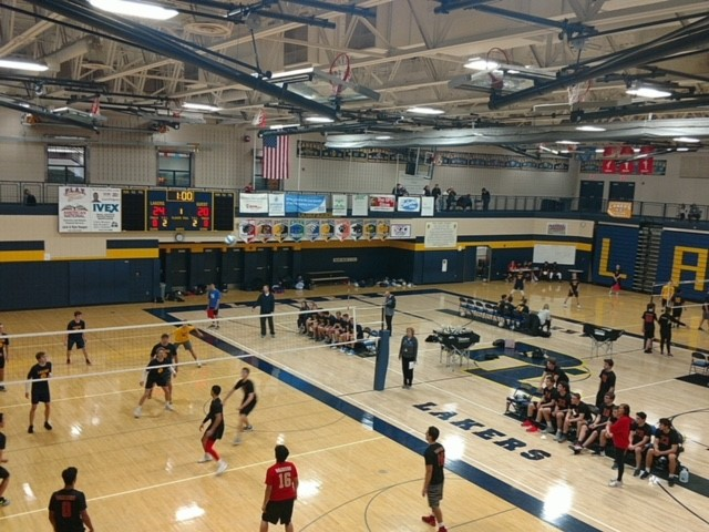 Boys Volleyball: Can you dig it?